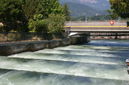 Fish Ladder at the Bonneville Dam on the Columbia River Separating Washington and Oregon.