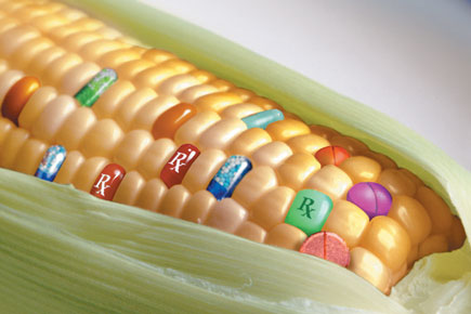 Genetically Modified Foods and Organisms