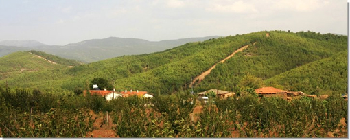 Marmariç Ecovillage in Turkey