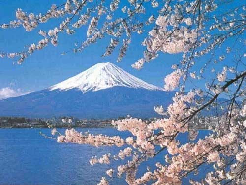 Shintoism & ecology